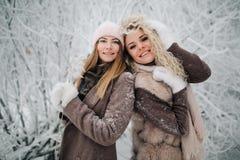 两名愉快的白肤金发的妇女画象帽子的在步行在冬天森林里 库存图片