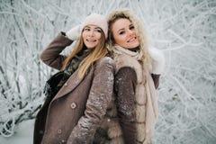两名愉快的白肤金发的妇女画象帽子的在步行在冬天森林里 免版税库存图片