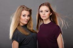 两名美丽的妇女,金发碧眼的女人和深色摆在 免版税库存照片