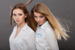 两名美丽的妇女,金发碧眼的女人和深色摆在 图库摄影
