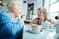 两名资深妇女的交谈 库存图片