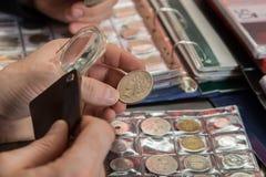 两名货币学家审查硬币的汇集 免版税库存照片