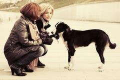 两名年轻时尚妇女和一条狗在城市街道上 库存图片