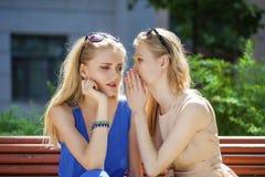 两名年轻美丽的妇女秘密在夏天绿化公园 库存图片