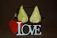 两圆白菜坐与心脏的长凳从 库存照片
