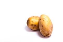 两土豆 免版税图库摄影