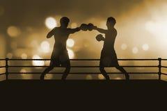 两在把装箱的m的专业亚洲拳击手战斗剪影  库存照片
