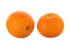 两在白色背景隔绝的成熟水多的桔子 库存图片