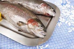 两在盘子服务的新鲜的鳟鱼 图库摄影