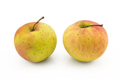 两在被隔绝的白色背景的苹果 免版税库存照片