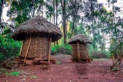 两在非洲村庄,肯尼亚盖了粮仓 免版税图库摄影