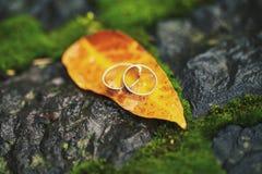 两在黄色叶子的婚礼圆环 图库摄影