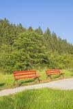 两在绿色森林里放弃了红色长凳 免版税库存图片