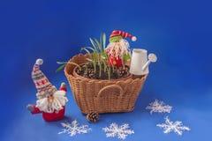 两地精和一个篮子与snowdrops 大量生产 免版税库存照片