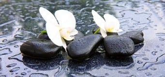 两块兰花花和石头 背景蜡烛开花温泉毛巾黄色 免版税图库摄影