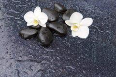 两块兰花花和石头 背景蜡烛开花温泉毛巾黄色 库存图片