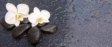 两块兰花花和石头 背景蜡烛开花温泉毛巾黄色 免版税库存照片