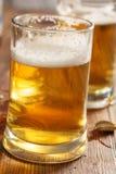 两块冰镇啤酒玻璃 库存照片