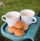 两块咖啡杯和杯形蛋糕在塑料持有人 图库摄影