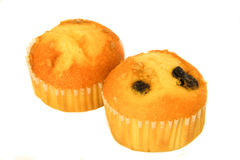 两块杯形蛋糕无核小葡萄干 图库摄影