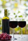 两块红葡萄酒玻璃和瓶土气木表面上 图库摄影