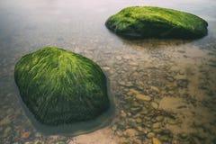 两块绿色石头在波罗的海中水  免版税库存照片