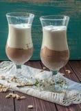两块高玻璃用包括新鲜的软的奶油的开胃和健康点心(香草和巧克力) 免版税图库摄影