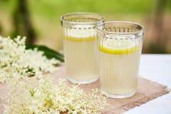 两块玻璃用新鲜的elderflower汁液 免版税图库摄影