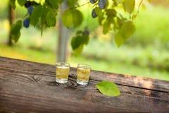 两块玻璃用李子白兰地酒 免版税库存照片
