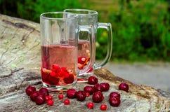 两块玻璃,樱桃,无核小葡萄干 免版税图库摄影