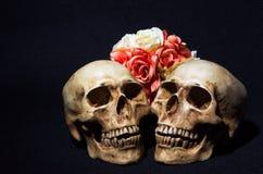 两块头骨静物画有五颜六色的花的在黑backgroun 库存图片