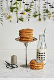 两堆曲奇饼、一个玻璃瓶牛奶,剪刀和spo 库存照片