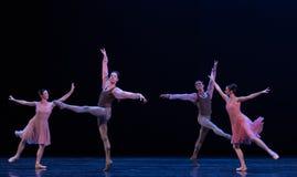 两夫妇古典芭蕾` Austen汇集` 免版税库存照片
