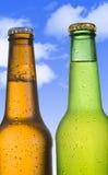 两寒冷结霜了在诱惑绿色和金黄棕色的瓶的啤酒结霜和 库存照片
