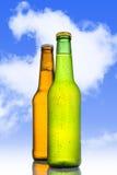 两寒冷结霜了在诱惑绿色和金黄棕色的瓶的啤酒结霜和 免版税库存图片