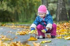 两岁伸她的手的女孩金属化热水瓶蹲下在秋天叶子覆盖物背景的烧瓶杯子 图库摄影