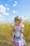 两岁女孩在她的手上的审查蓝色野生矢车菊 免版税库存图片