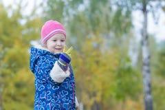 两岁显示在她的手上的女孩两个手指在秋天公园叶子背景 免版税库存图片