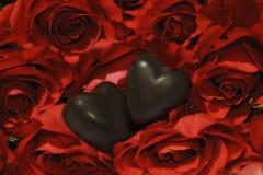 两巧克力心脏和鲜红色的玫瑰 库存照片