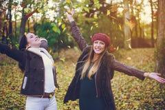 两庆祝秋天的逗人喜爱的少妇 免版税库存图片