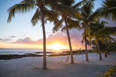 两张轻便折叠躺椅在日落的棕榈树下在一个空的海滩在 免版税图库摄影