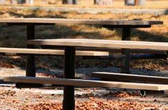 两张野餐桌在树荫下 免版税库存照片