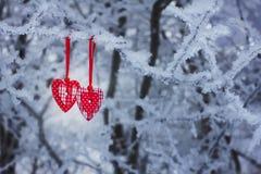 两心脏在冬天 免版税库存图片
