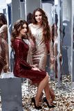 两性感的美丽的女服皮包骨头的金红色礼服发光的衣服饰物之小金属片 免版税库存图片