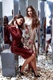 两性感的美丽的女服皮包骨头的金红色礼服发光的衣服饰物之小金属片 库存图片