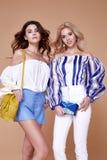 两性感的美丽的妇女白肤金发和深色的卷发魅力m 免版税图库摄影
