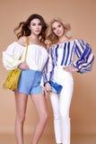 两性感的美丽的妇女白肤金发和深色的卷发魅力m 免版税库存照片