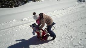 两愉快的漂亮的孩子有乐趣雪橇乘驾在山的一个积雪的森林在冬天 兄弟和 股票视频