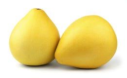 两成熟柚果子 免版税库存图片