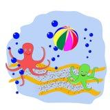 两打球的章鱼在海的底部 库存照片